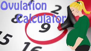 Free Ovulation Calculator – Trying To Conceive? Calculate Your Most Fertile Days