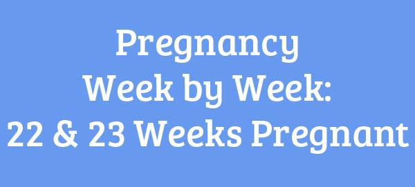 22 & 23 Weeks Pregnant