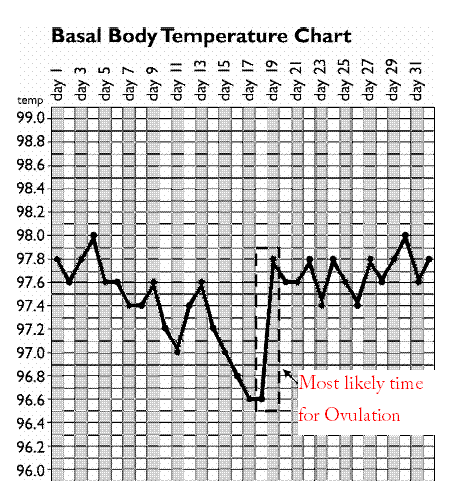 Natural Birth Control Basal Body Temperature Chart