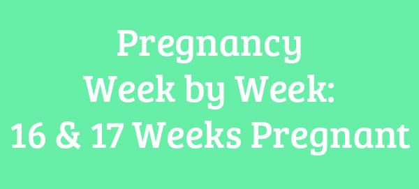 16 & 17 Weeks Pregnant