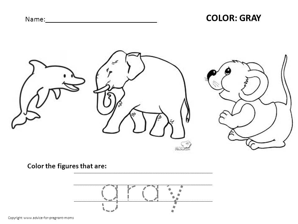 Free Preschool Worksheets For Learning Colors – Mammal Worksheets